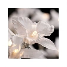 LIGHT STRING crisp white orchid (20 lights)
