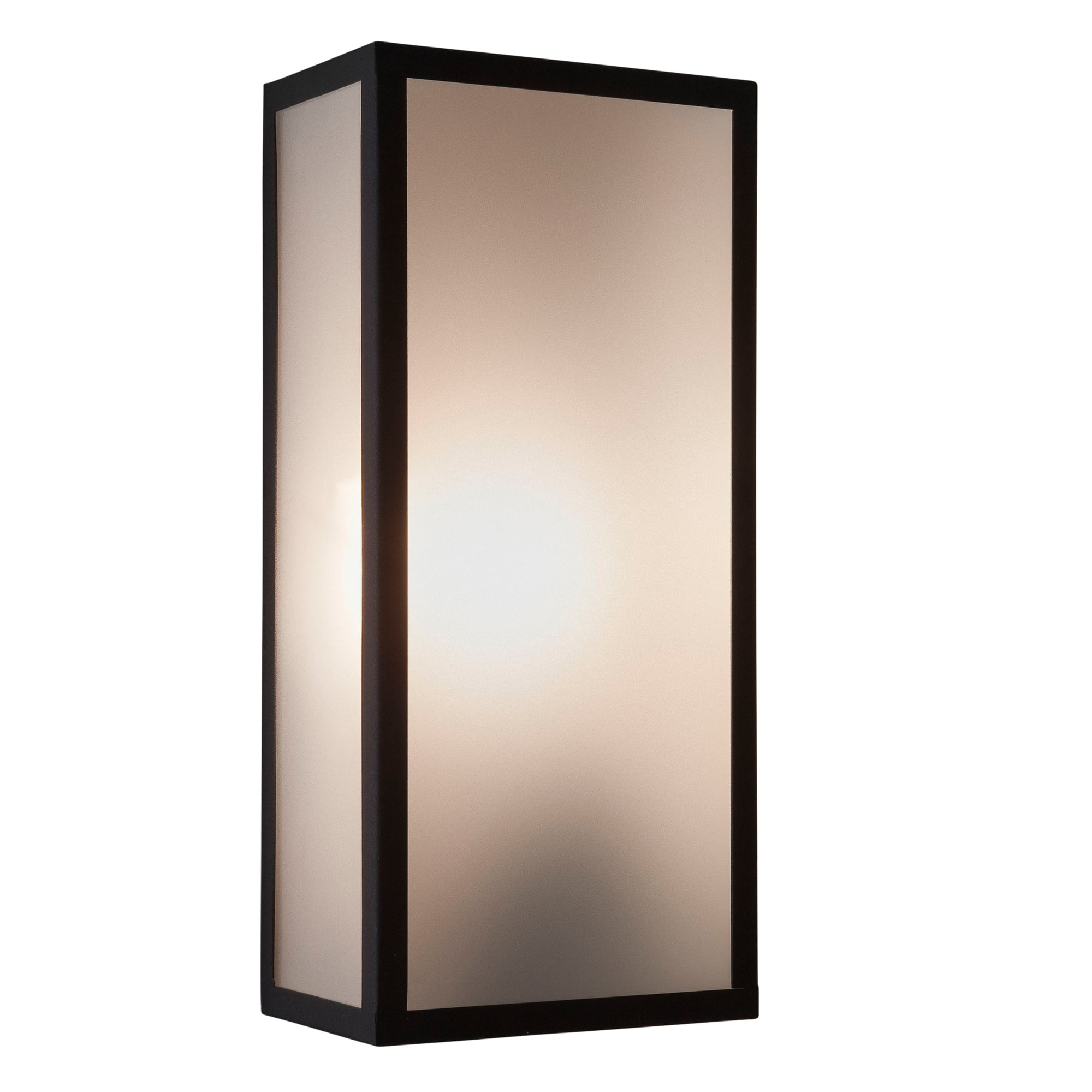 Black Exterior Wall Lantern In A Frosted Glass Panel