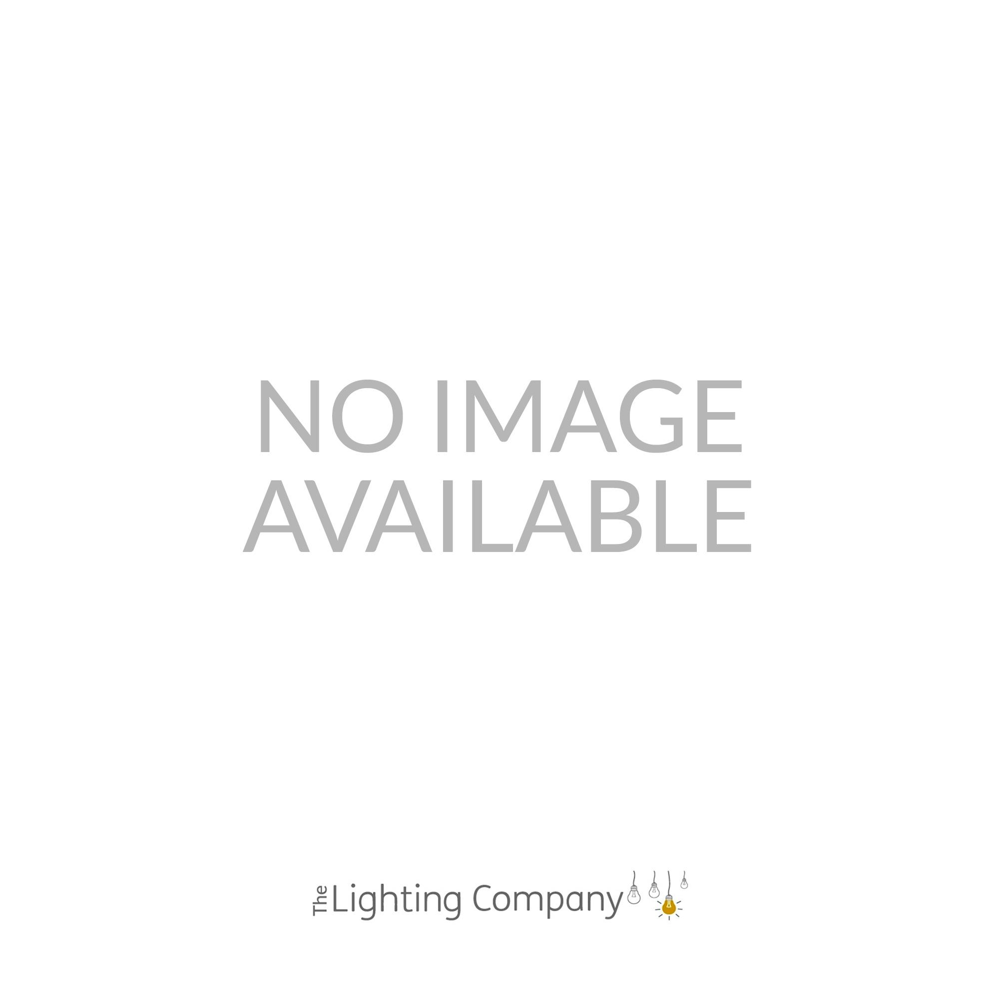 The David Hunt Lighting Collection ANTLER Stag Floor Lamp