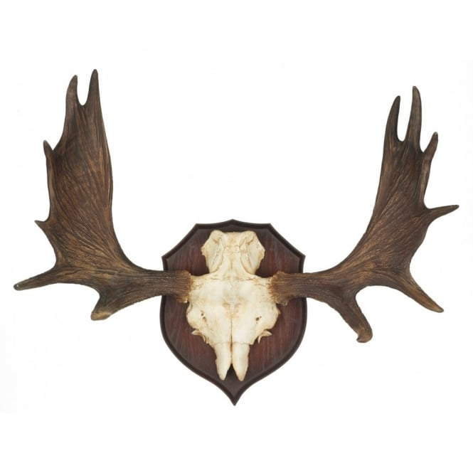 BAVARIAN stag antler wall sculpture